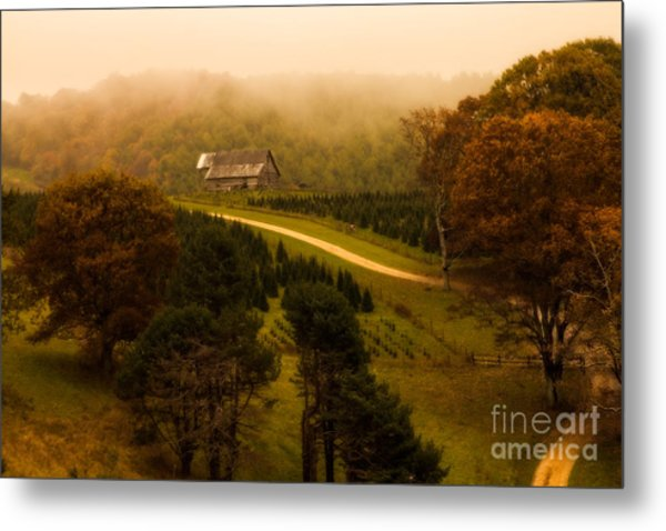 Foggy Autumn Country Road Metal Print