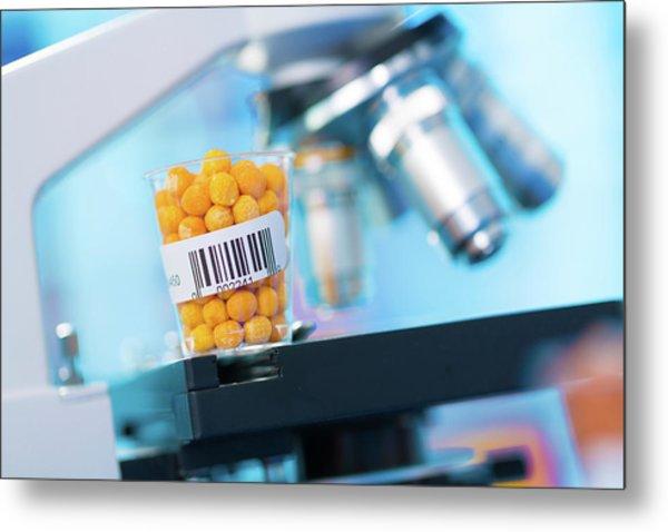 Food Sample And Microscope Metal Print