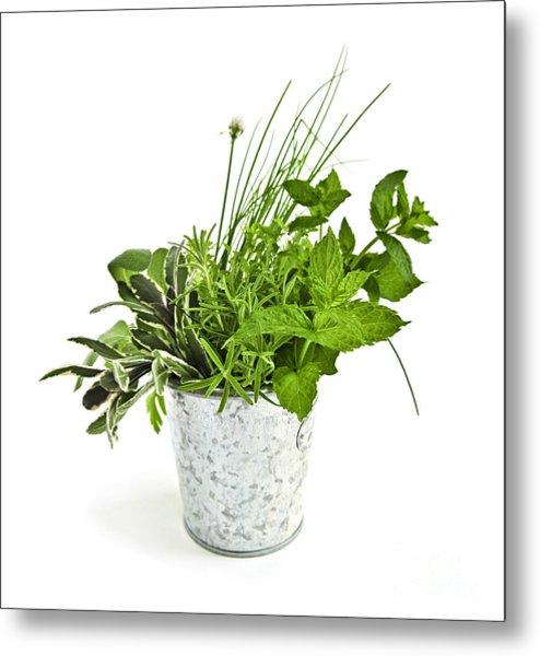 Fresh Herbs Metal Print