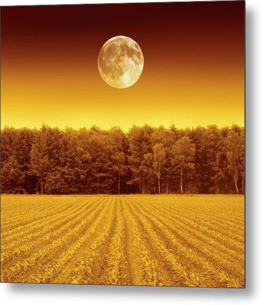 Full Moon Over A Field Metal Print by Detlev Van Ravenswaay