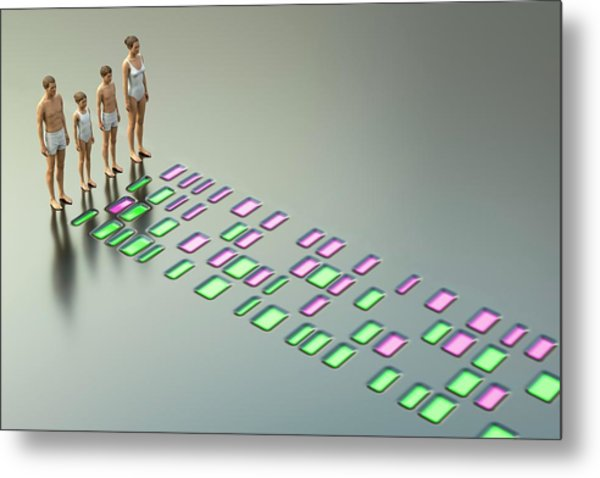 Genetic Relationships Of A Family Metal Print by David Parker