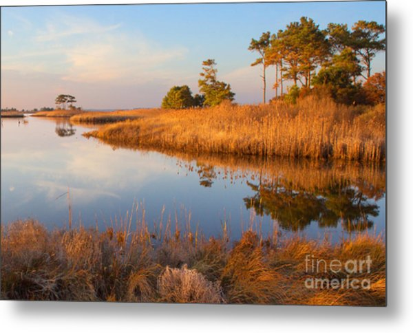 Gordons Pond Metal Print