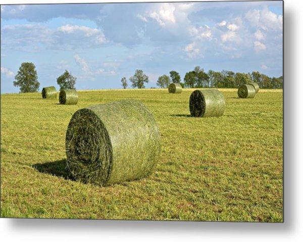 Hay Bales In Spring Metal Print