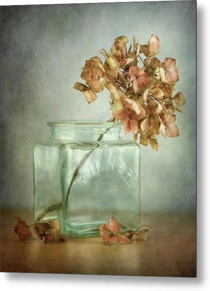 Hydrangea Metal Print by Mandy Disher