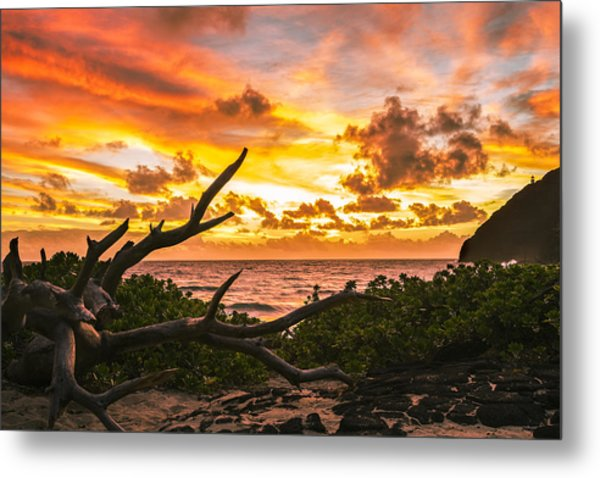 Makapuu Sunrise 4 Metal Print