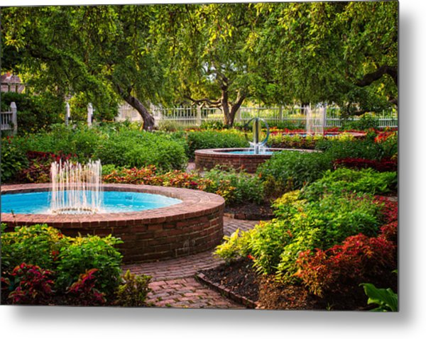 Metal Print featuring the photograph Morning Garden by Jeff Sinon