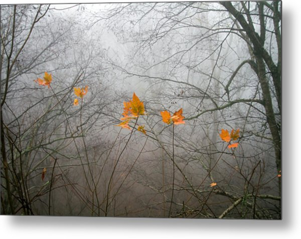 Mountain Fog Metal Print