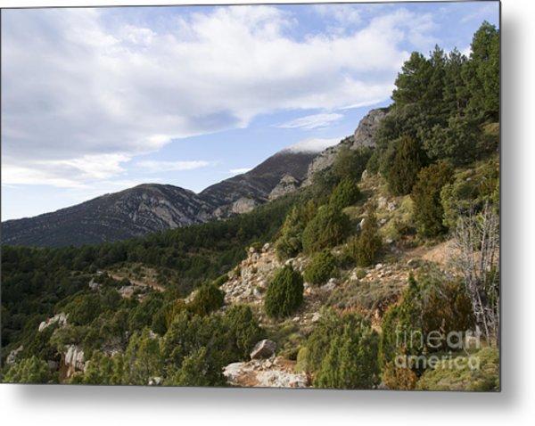 Mountain Landscape In Huesca Metal Print