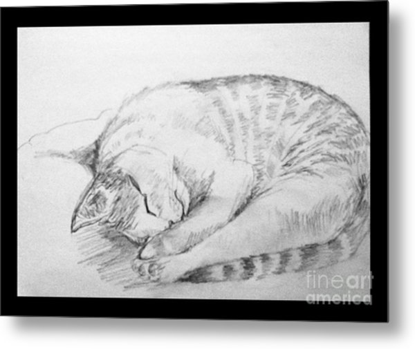 My Pet Cat Metal Print