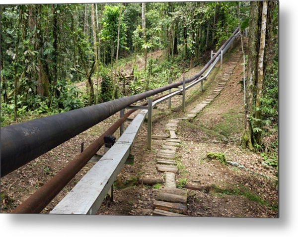 Oil Pipeline In Rainforest Metal Print