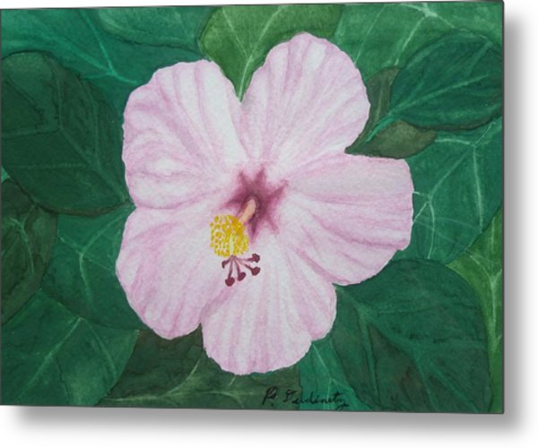 Pink Hibiscus Metal Print by Patty Dopkin