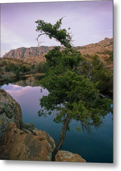 Post Oak Lake And Elk Mountain Metal Print