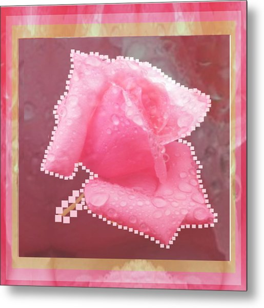 Rose Flower Petal Art Texture N Color Tones Navinjoshi  Rights Managed Images Graphic Design Is A St Metal Print