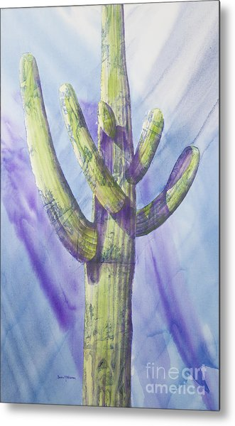 Saguaro In Winter Metal Print