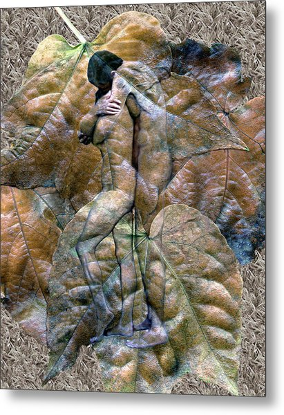 Sheltered Metal Print