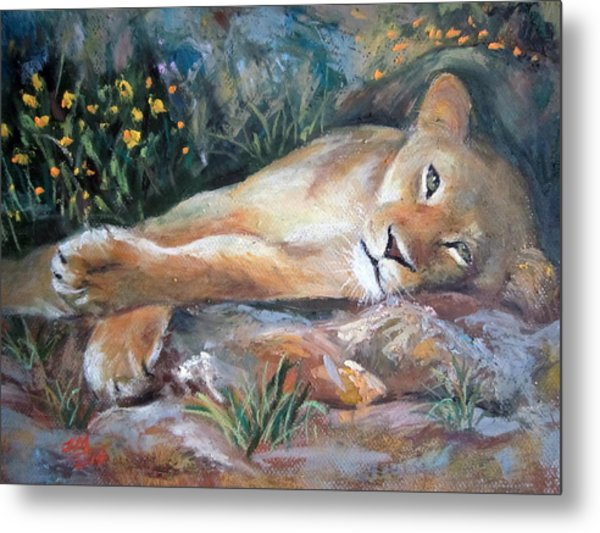 Sleep Lion Metal Print