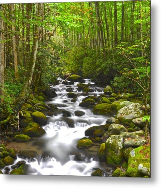 Smoky Mountain Stream Metal Print