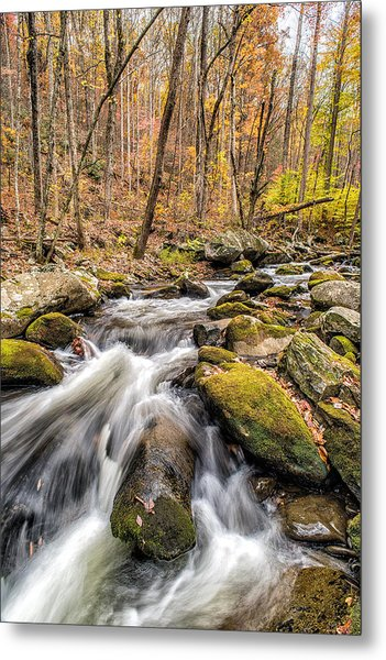 Smoky Mountain Stream 2 Metal Print