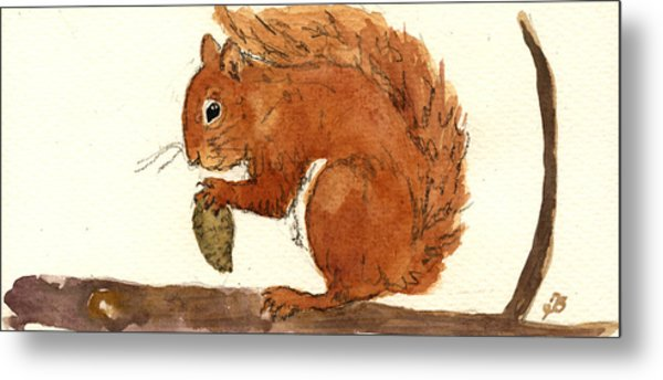 Squirrel Metal Print