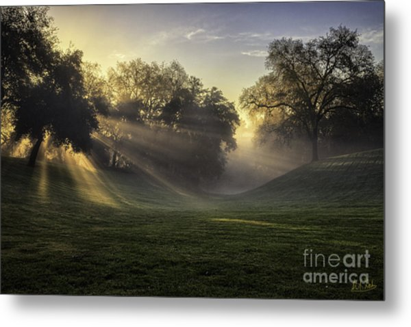 Sunrise Among The Oaks Metal Print