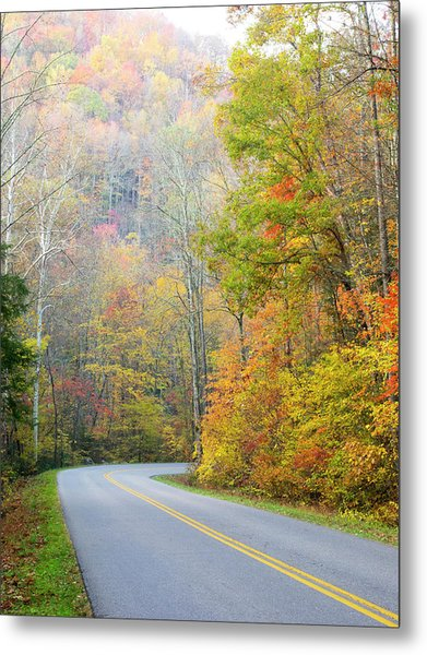 Tennessee, Great Smoky Mountains Metal Print