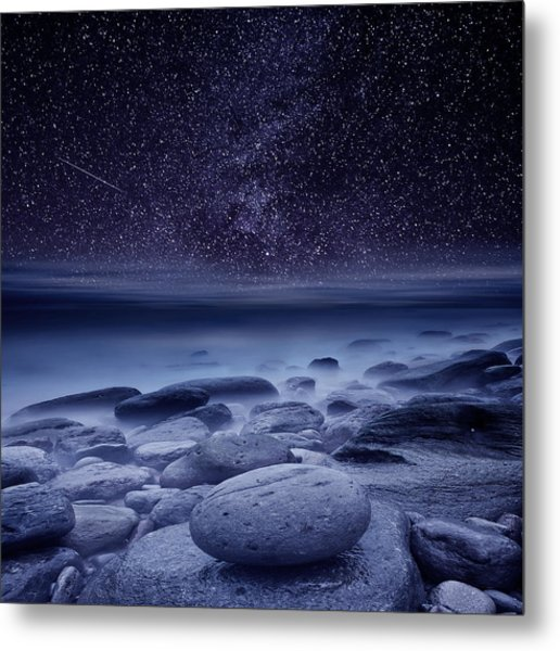 The Cosmos Metal Print