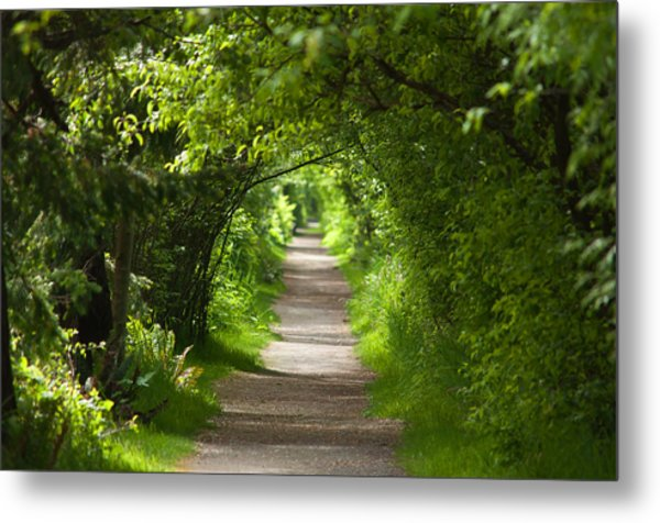 The Green Tunnel Metal Print