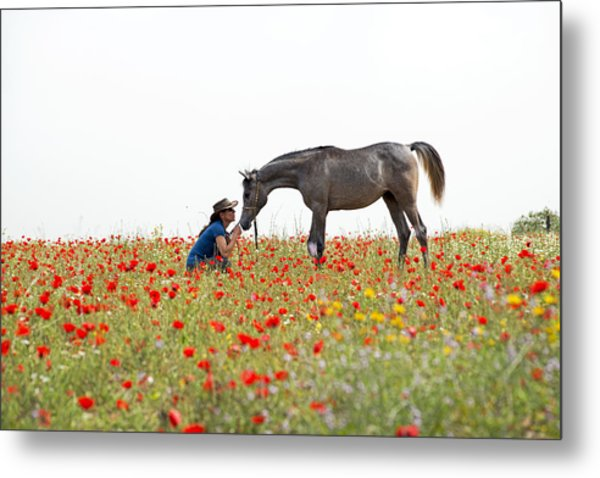 Three At The Poppies' Field... 4 Metal Print