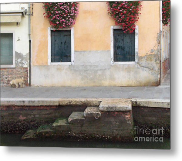 Venice Canal Shutters With Dog And Flowers Horizontal Metal Print