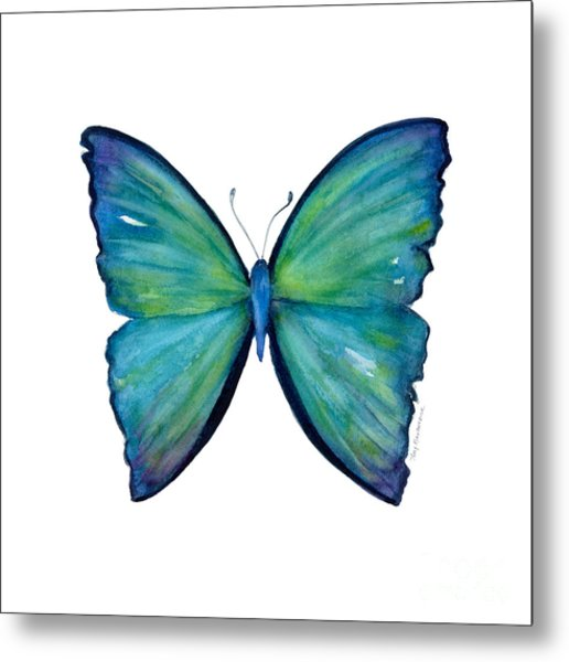 21 Blue Aega Butterfly Metal Print