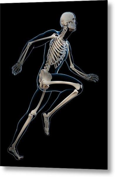 Skeletal System Of Runner Metal Print by Sebastian Kaulitzki
