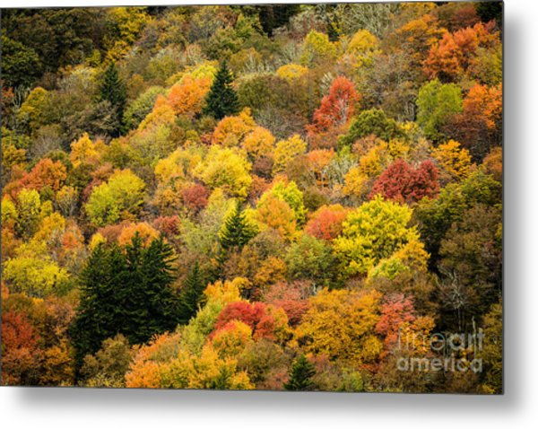 2679 Blue Ridge Parkway Metal Print by Stephen Parker
