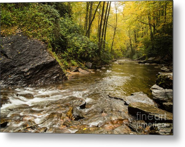 2725 Looking Glass Falls Metal Print by Stephen Parker
