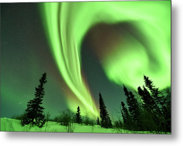 Aurora Borealis Over Trees Metal Print by Dr P. Marazzi