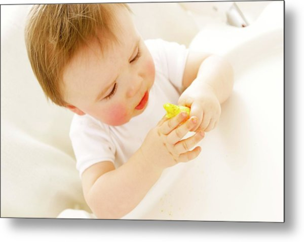 Baby Boy Eating A Crisp Metal Print by Ruth Jenkinson/science Photo Library