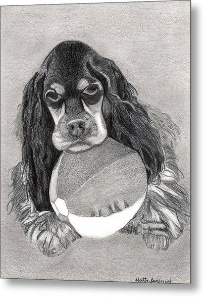 Cocker Spaniel Dog Portrait Metal Print by Olde Time  Mercantile
