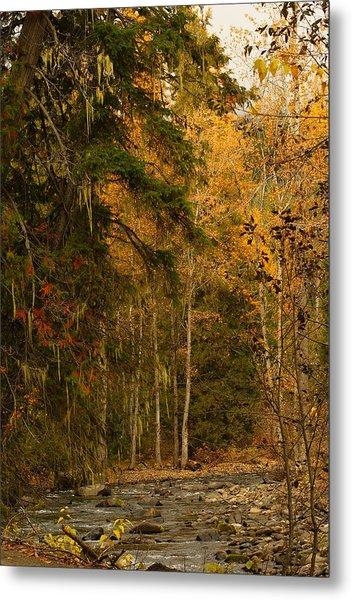Fall At Sheep Creek Metal Print