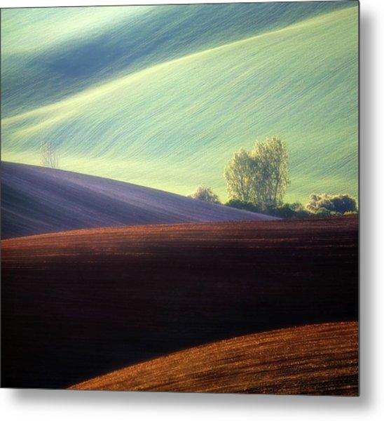 Fields... Metal Print