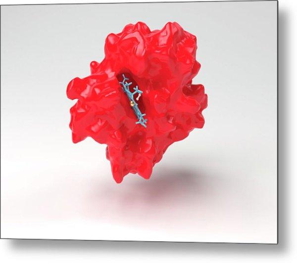 Haemoglobin Molecule Metal Print