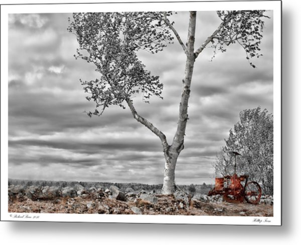 Hilltop Farm Metal Print by Richard Bean