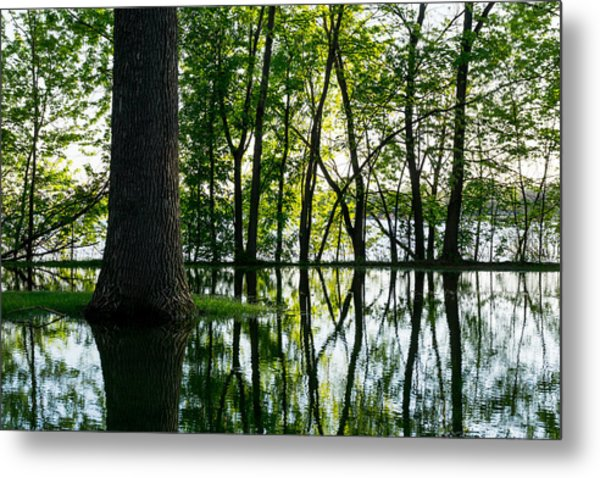 Lake Nokomis In A Wet Spring Metal Print