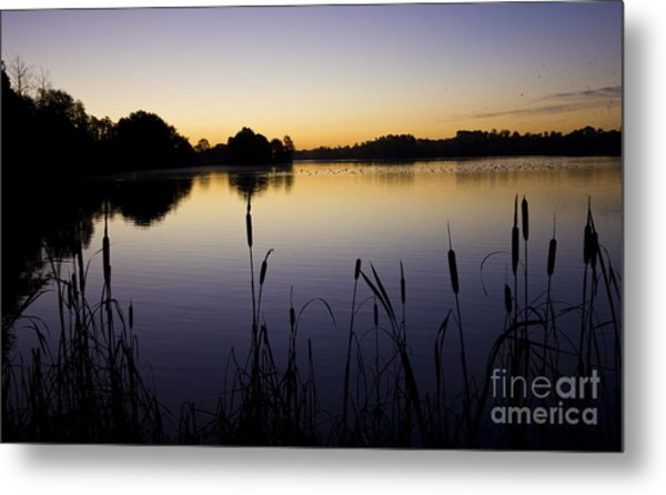 Lake Sunrise Metal Print by Darren Burroughs