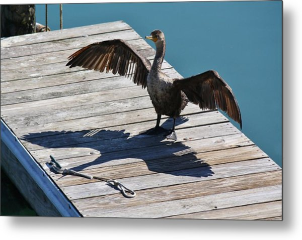 Me And My Shadow Metal Print by Paulette Thomas
