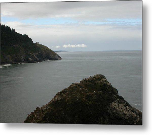 Oregon Coastline Metal Print by Yvette Pichette