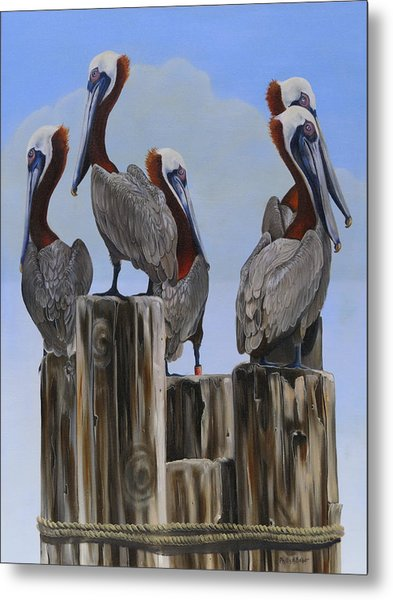 Pelicans Five Metal Print
