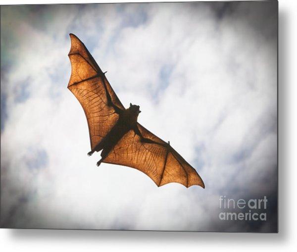 Spooky Bat Metal Print