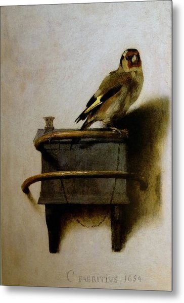 Metal Print featuring the painting The Goldfinch by Carel Fabritius