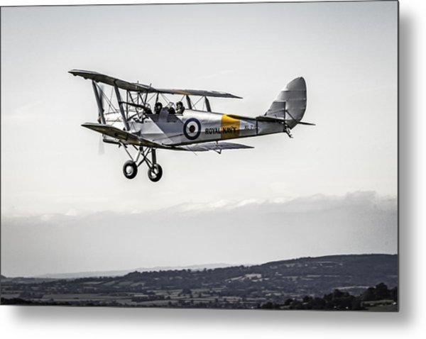 Tiger Moth Metal Print