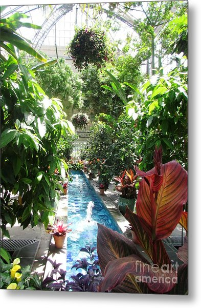Washington Dc  Botanical Garden Metal Print