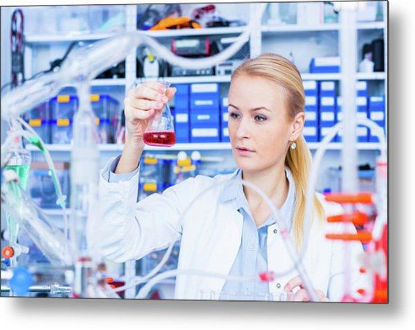 Female Chemist Working In Lab Metal Print by Wladimir Bulgar/science Photo Library